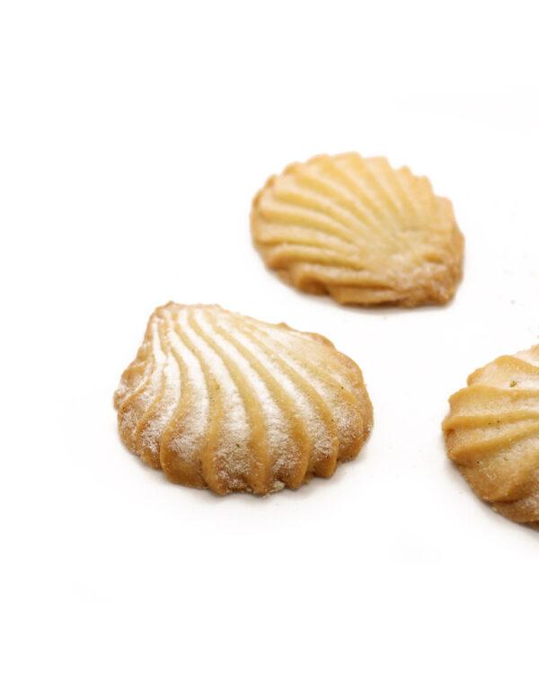 Conchiglie Pasticceria Tripaldi